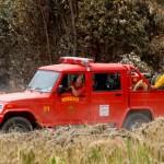 Bomberos realiza unas 100 intervenciones diarias en principios de incendio de bosques y campos