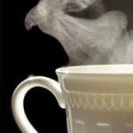 El té más caro del mundo se hará a partir de estiércol de panda: 34 mil dólares el medio quilo