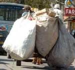 Clasificadores de residuos exigirán un sueldo a la Intendencia
