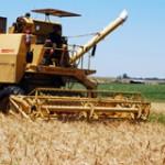 Agro se convirtió en el  mayor generador de  empleo: 3 de cada 4  nuevos puestos