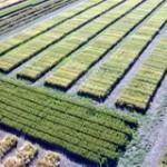 Ministerio de Agricultura obliga a regular el uso y manejo de suelos