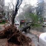 Dos muertos, 462 evacuados y múltiples destrozos, saldo del ciclón