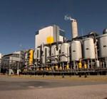 Pastera UPM: Uruguay dará a luz datos de contaminación