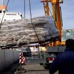 Uruguay apuesta a incrementar exportaciones no tradicionales