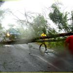 Sistema de Emergencia y ANEP deciden suspender clases en Maldonado y Rocha por vientos