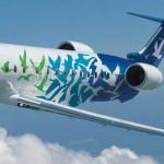 El gobierno analiza todos los planes de negocio que tiene para lograr tener nueva aerolínea
