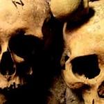 Secretaría de Derechos Humanos estudia cinco cráneos hallados en Paysandú