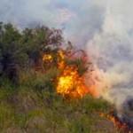 """Incendio en La Coronilla """"empeoró por el calor"""" pero no hay riesgos para pobladores ni fincas"""