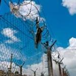 Denuncian que desde 2009 no hubo avances en el sistema carcelario uruguayo