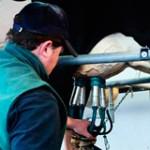 Conflicto lácteo: pequeños tamberos piden protocolo para tirar leche