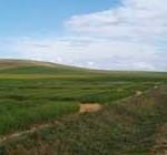Gobierno limita venta de tierras a extranjeros e insiste con símil al ICIR