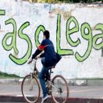 Al mismo tiempo que promueve su liberación, Uruguay bate récord histórico de incautación de marihuana y procesamientos