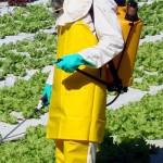 Insostenibilidad de los agrotóxicos