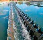 Facultad de Ciencias y OSE: sistema de alerta por algas en agua corriente