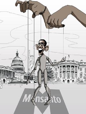Caricatura de Obama, títere de Monsanto