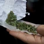 OEA dice que despenalización de marihuana debe estar en la base de una estrategia de salud