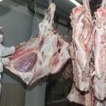 Mujica asegura que paro de veterinarios afectaría exportaciones de carne