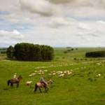 Turismo rural y natural multiplica dedicación: Maldonado lidera la tendencia
