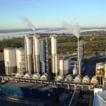 UPM no podrá retomar producción hasta noviembre si no autorizan ampliación