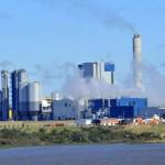 DINAMA dice que UPM no contamina. Presidencia analiza aumento de producción