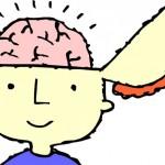 ¿Qué es la inteligencia? Hay 10 formas distintas: identifique la suya y la de sus hijos
