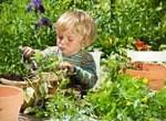 Niños que practican jardinería tienen mejor evolución de sus facultades mentales