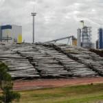 Entre Durazno y Cerro Largo: UPM instalaría nueva planta de celulosa en Uruguay