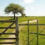 Gobierno prohibirá compra y tenencia de tierras a Estados extranjeros