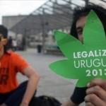 Consumidores uruguayos celebran cannabis legal