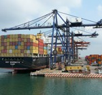 Descendieron las exportaciones en primera quincena de diciembre