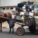 Ediles aprueban retirar los carritos tirados por caballos de Ciudad Vieja