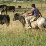 Ministerio de Trabajo laudó propuesta de aumento salarial para rurales
