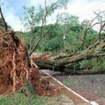 Un muerto, evacuados, daños materiales y 45.000 hogares sin luz dejó el temporal
