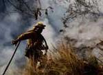 Glendora: Alerta Roja en Los Ángeles y San Francisco por descomunal incendio