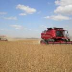 Inversiones en cadenas agroindustriales fueron US$ 3.219 millones entre 2008 y 2013