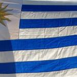 Uruguay enviará 240 atletas en 30 disciplinas a los Juegos olímpicos Odesur, en Santiago de Chile