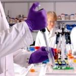 Logran que cobayos con Alzheimer recuperen la memoria con terapia génica