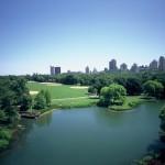 Nueva York lanza programa de compostaje de residuos orgánicos