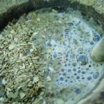 Análisis demuestran que plomo y cadmio en yerba mate no pasan al agua caliente