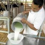 Proyectos lecheros se beneficiarán con fideicomiso de Colonización