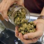 El MSP confirmó que la venta de marihuana será desde 2015