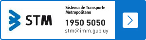 STM: Sistema de Transporte Metropolitano