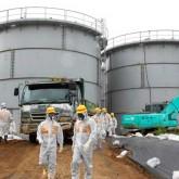 Daño genético y mutaciones se multiplican en Fukushima a tres años de tsunami