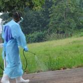 OMS y Cruz Roja alertan que el mundo subestima magnitud de epidemia de ébola