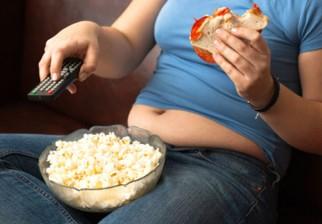 El consumo de grasas, más que la ingesta de calorías, es el verdadero determinante en el aumento de peso