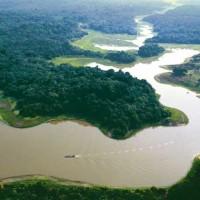 Brasil construye en Amazonia una torre más alta que la Eiffel: tendrá 325 metros