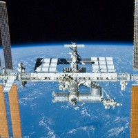 Plancton y organismos terrestres sobreviven condiciones extremas del espacio