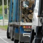 Transportistas de carga logran acuerdo y levantan bloqueo a ingreso de madera en UPM
