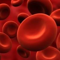 13 de octubre: Día Mundial de la Trombosis