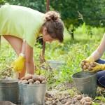"""UTU realiza taller sobre: """"El rol de la educación para el desarrollo sustentable de la agricultura familiar"""""""